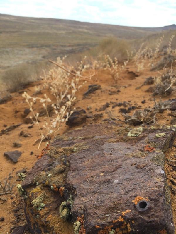 Ақтөбеде метеорит құлаған Жаманшың кратері тоналып жатыр - профессор Флоренский